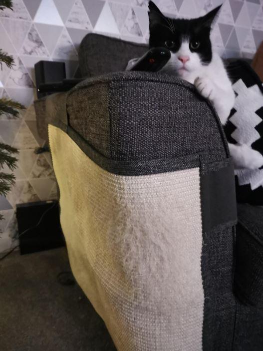 esquinero esquina sofá