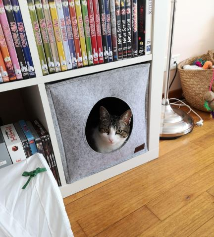 muebles baratos para gatos