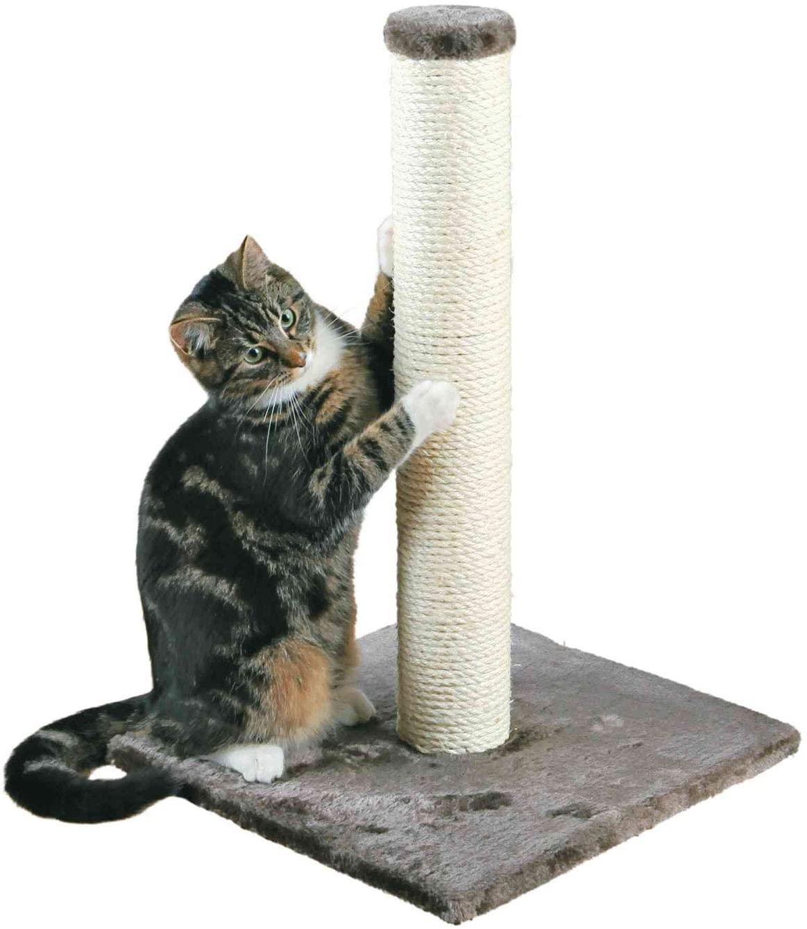 poste rascador para gatos economico